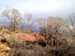 Take a hike in beautiful Red Rocks
